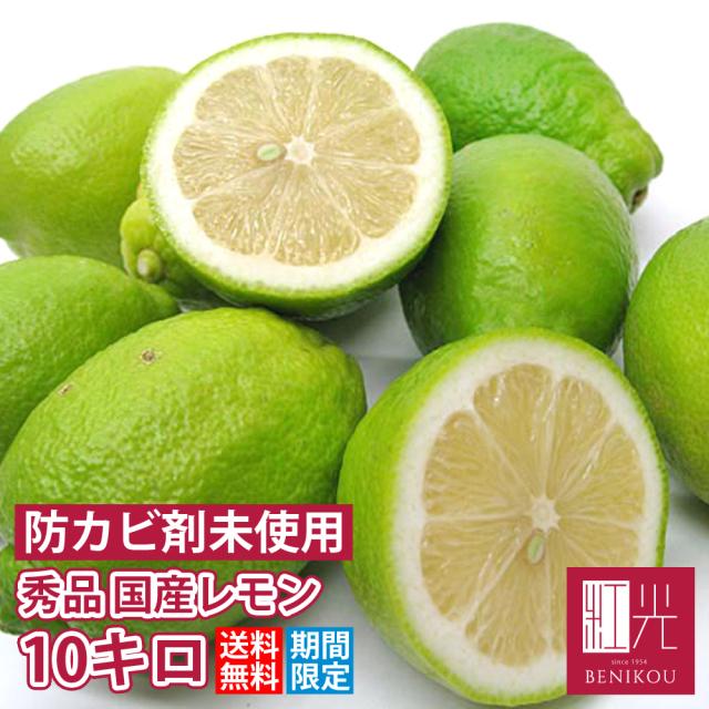 国産レモン 【送料無料】 静岡産・国産レモン 秀品10.0kg   「北海道・沖縄は+1100円」