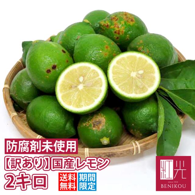 国産レモン  【送料無料】 静岡産 訳ありレモン 2.0kg 「北海道・沖縄への配送は+1100円」