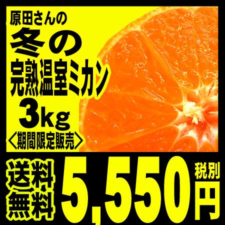 【冬の限定販売】原田さんの完熟温室みかん  3kg 「北海道・沖縄は+540円」