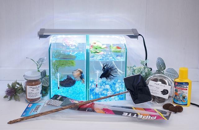 ショーベタ飼育スターターセット~水槽2点縦置き用ヒーターなし【送料無料】~新LEDライト導入でお安くなりました!