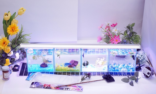 ショーベタ飼育スターターセット~水槽4点横置き用マルチパネルヒーター付【送料無料】~新LEDライト導入でお安くなりました!