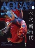 月刊アクアライフ6月号「ベタ、新時代!」