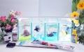 ショーベタ飼育スターターセット~水槽4点縦置き用ヒーターなし【送料無料】~新LEDライト導入でお安くなりました!