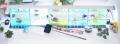 ショーベタ飼育スターターセット〜水槽5点横置き用マルチパネルヒーター付【送料無料】〜