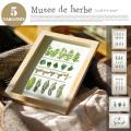 Musee de herbe(ミュゼ ドゥ エルブ) ハーブアート JIG 全5タイプ