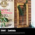 TUINIE ITN 52437 Zamifolia JIG