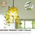 ペンダントライト ボタニック フィットニア 1灯 BOTANIC FIttonia CC-40341