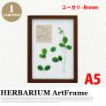 リーフアート フラワーアート ハーバリウム アートフレーム A5 ユーカリ ブラウン
