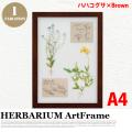 リーフアート フラワーアート ハーバリウム アートフレーム A4 ハハコグサ ブラウン