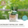 イミテーショングリーン サキュレントリフレリウム 消臭アーティフィシャルグリーン KH-60985