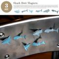 Shark Butt Magnets(シャークバットマグネット) KMG64 キッカーランド