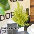 ミニゴールドクレスト 光触媒 イミテーショングリーン 送料無料