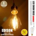 LEDスワンバルブ調光対応 ディマーエジソン  SWB-E052L