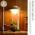 ボタニックジャーライト BOTANIC JAR LIGHT AOL-602/230 テーブルスタンド