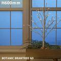 ライト イルミネーション ボタニックブランツリー 60 照明ライトLED イルミネーション