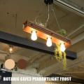 ペンダントライト botanic Cafe3pendantlight frost ボタニックカフェ3