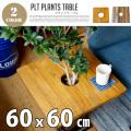 PLT Plants Table(プランツテーブル) スクエア60x60cm