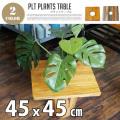 PLT Plants Table(プランツテーブル) スクエア45x45cm