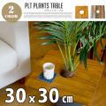 PLT Plants Table(プランツテーブル) スクエア30x30cm
