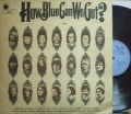 【英Blue Horizon】Fleetwood Mac, Chicken Shack, etc/How Blue Can We Get? (2LP)