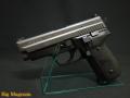 P229 フレームHW エボリューション2 モデルガン