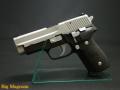 P228 ツートン フレームHW エボリューション2 モデルガン