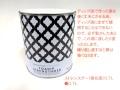 【期間限定超特価】アメリカンフラワー ストレンスナー(強化液)0.7L