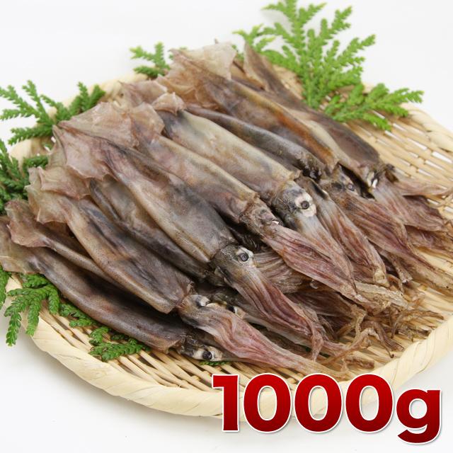 ひと口サイズの小さく柔らかい丸干イカ 1000g