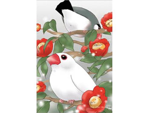 【FT&ぶんちょ屋】ポストカード・つばき/文鳥◆クロネコDM便可能