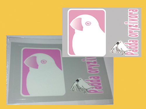 【まぢかるどりぃまぁ】カードサイズシール/文鳥・白◆クロネコDM便可能