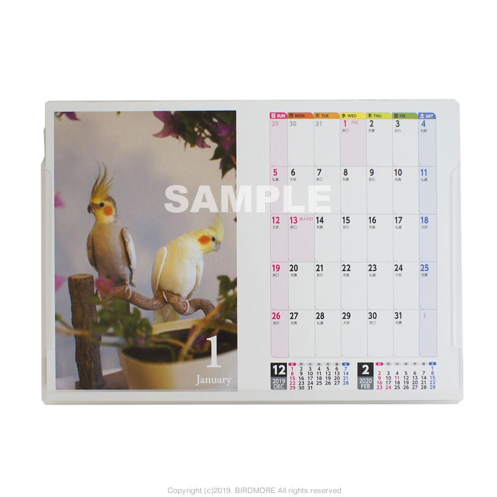 9995542●特価●【イーフェニックス】2020年 3way オカメインコ 鳥写真カレンダー ◆クロネコDM便可能