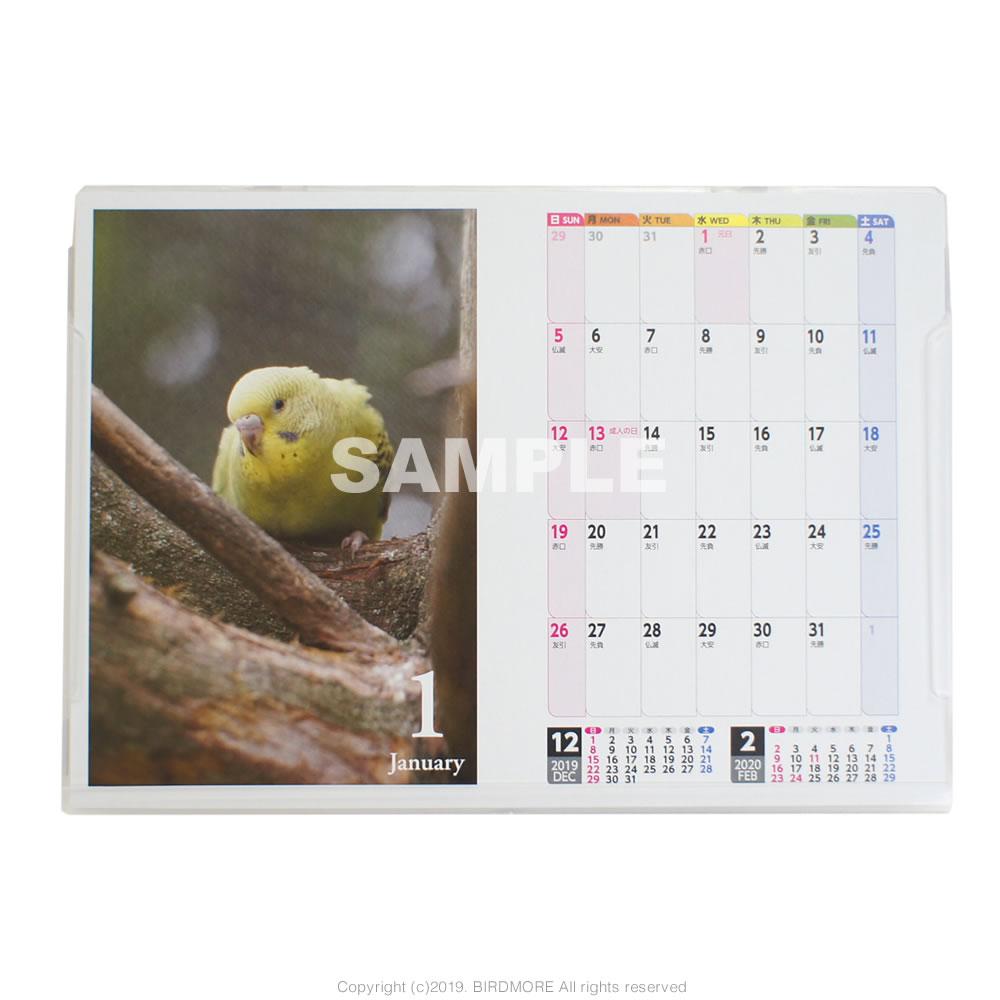 9995548●特価●【イーフェニックス】2020年 3way セキセイインコ 鳥写真カレンダー ◆クロネコDM便可能