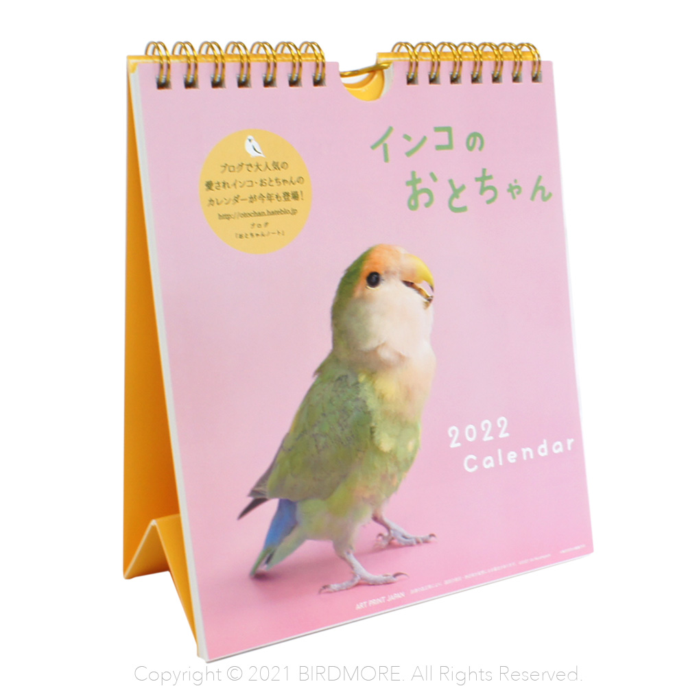 9995557【ART PRINT JAPAN】2022年 インコのおとちゃん週めくりカレンダー◆