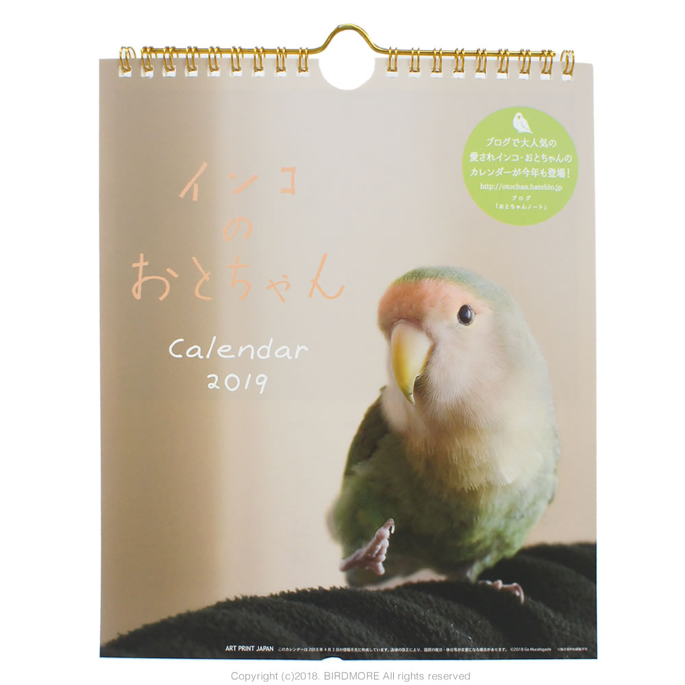 9995558【ART PRINT JAPAN】2019年 インコのおとちゃん壁掛けカレンダー◆クロネコDM便可能