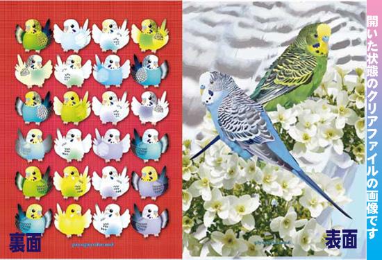 【ぴよぴよブランド】A4クリアファイル/セキセイ2羽◆