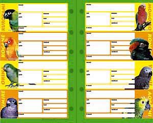 【金のくちばし】★アドレスリフィル・システム手帳用/中大型8種◆