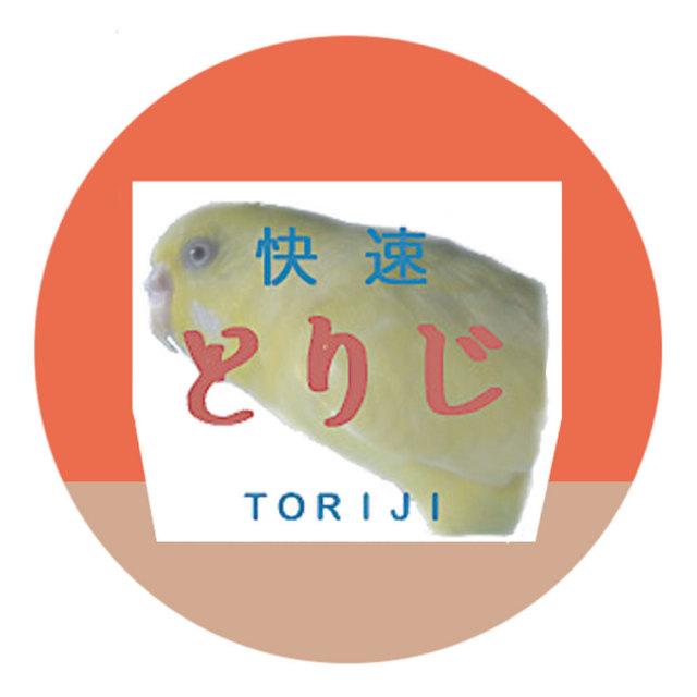 【fumi】缶バッジ/セキセイ・ルチノー◆
