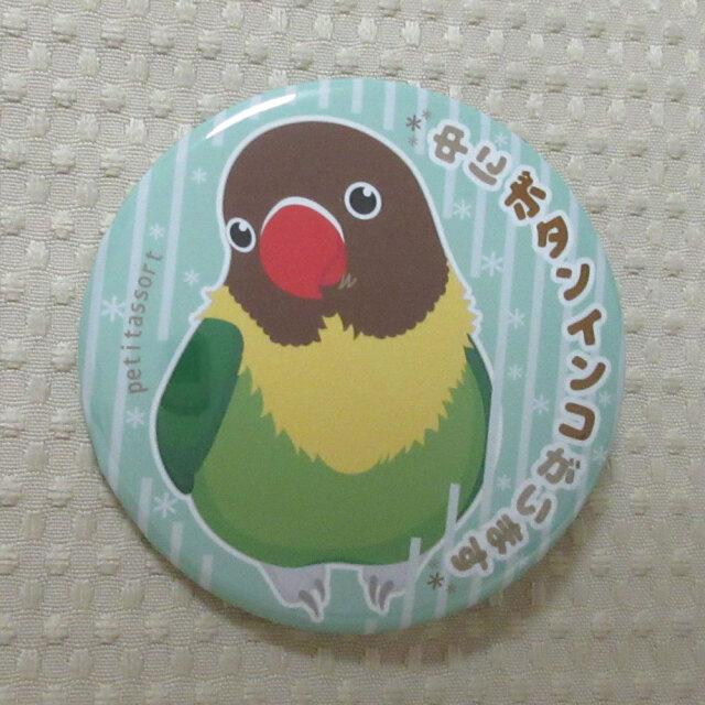 【petitassort】缶バッジ/ボタンインコ・キエリクロ