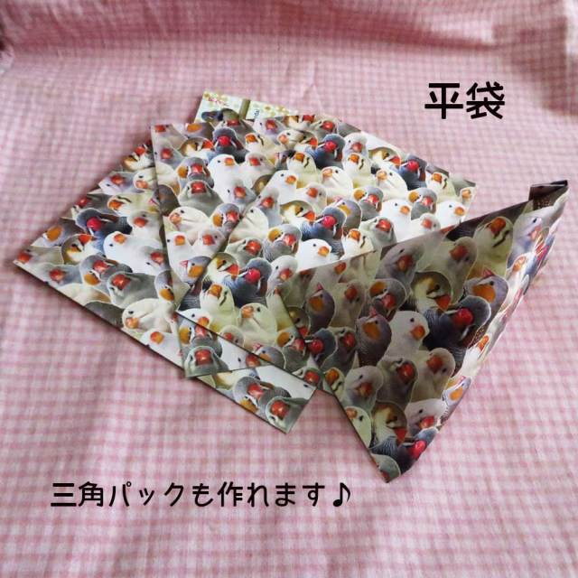 【だが屋】平袋/キンカチョウ・トラウマ◆