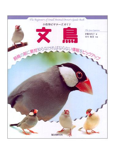 9992018【誠文堂新光社】★ビギナーズガイド 文鳥◆