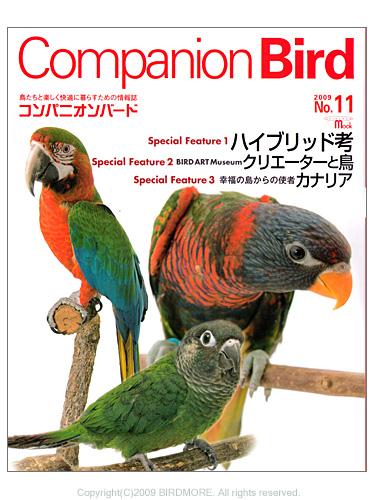 9992861【誠文堂新光社】★Companion Bird (コンパニオンバード) NO.11◆
