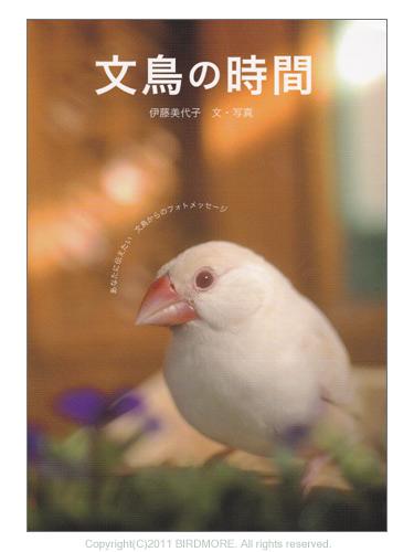 9993432【誠文堂新光社】文鳥の時間◆