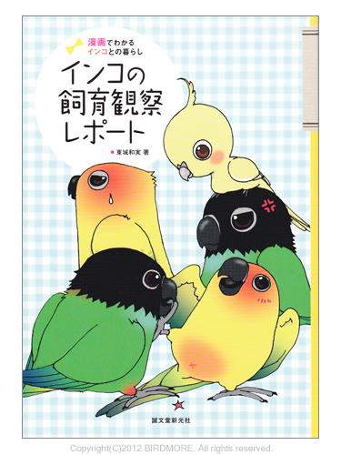 9993972【誠文堂新光社】インコの飼育観察レポート◆