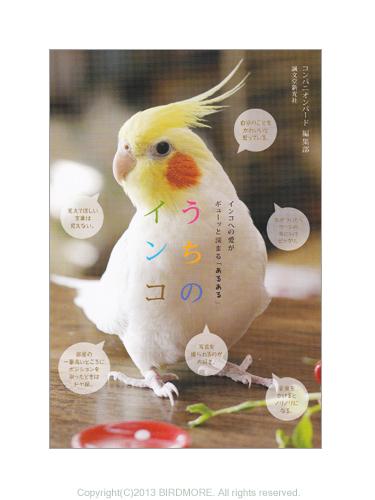 9994055【誠文堂新光社】うちのインコ/インコあるあるフォトエッセイ ◆