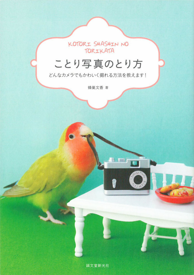 9995068【誠文堂新光社】ことり写真のとり方◆