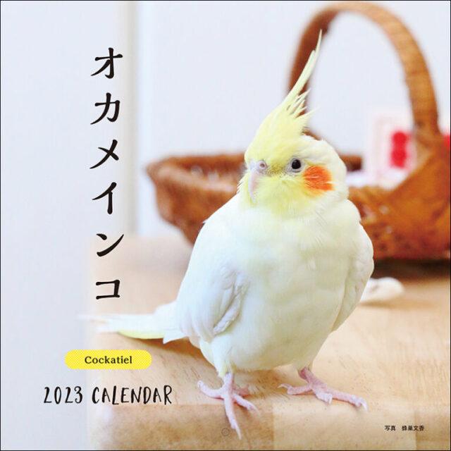 9995538【誠文堂新光社】2022年 大判カレンダー オカメインコ
