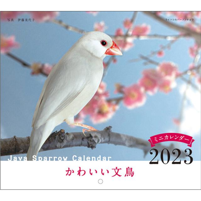 9995539【誠文堂新光社】2022年 ミニ判カレンダー かわいい文鳥(ぶんちょう)のカレンダー ◆