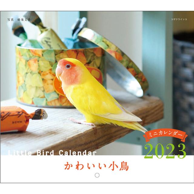 9995540【誠文堂新光社】2022年 ミニ判カレンダー かわいい小鳥(ことり)のカレンダー ◆