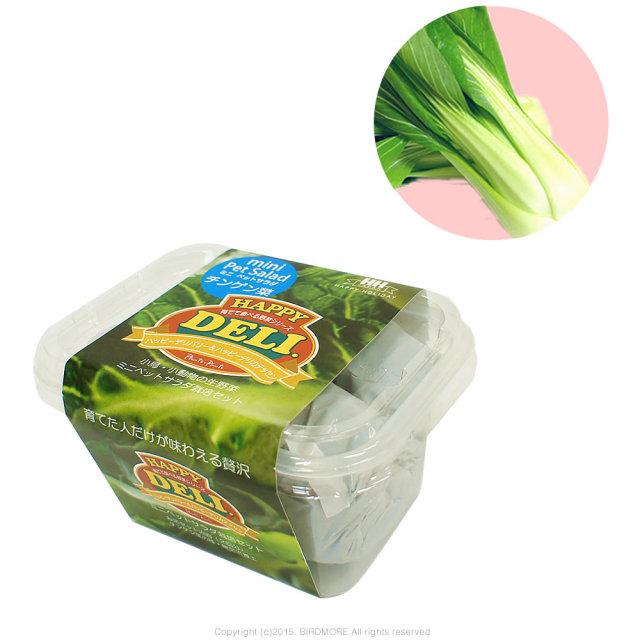 9995544【HHJ】育てて食べる野菜HAPPY DELI MINI/チンゲン菜