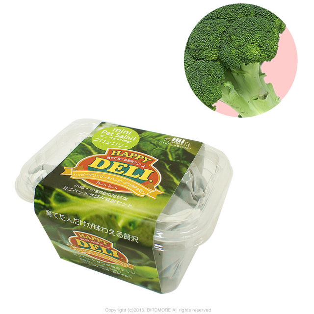 9995546【HHJ】育てて食べる野菜HAPPY DELI MINI/ブロッコリー